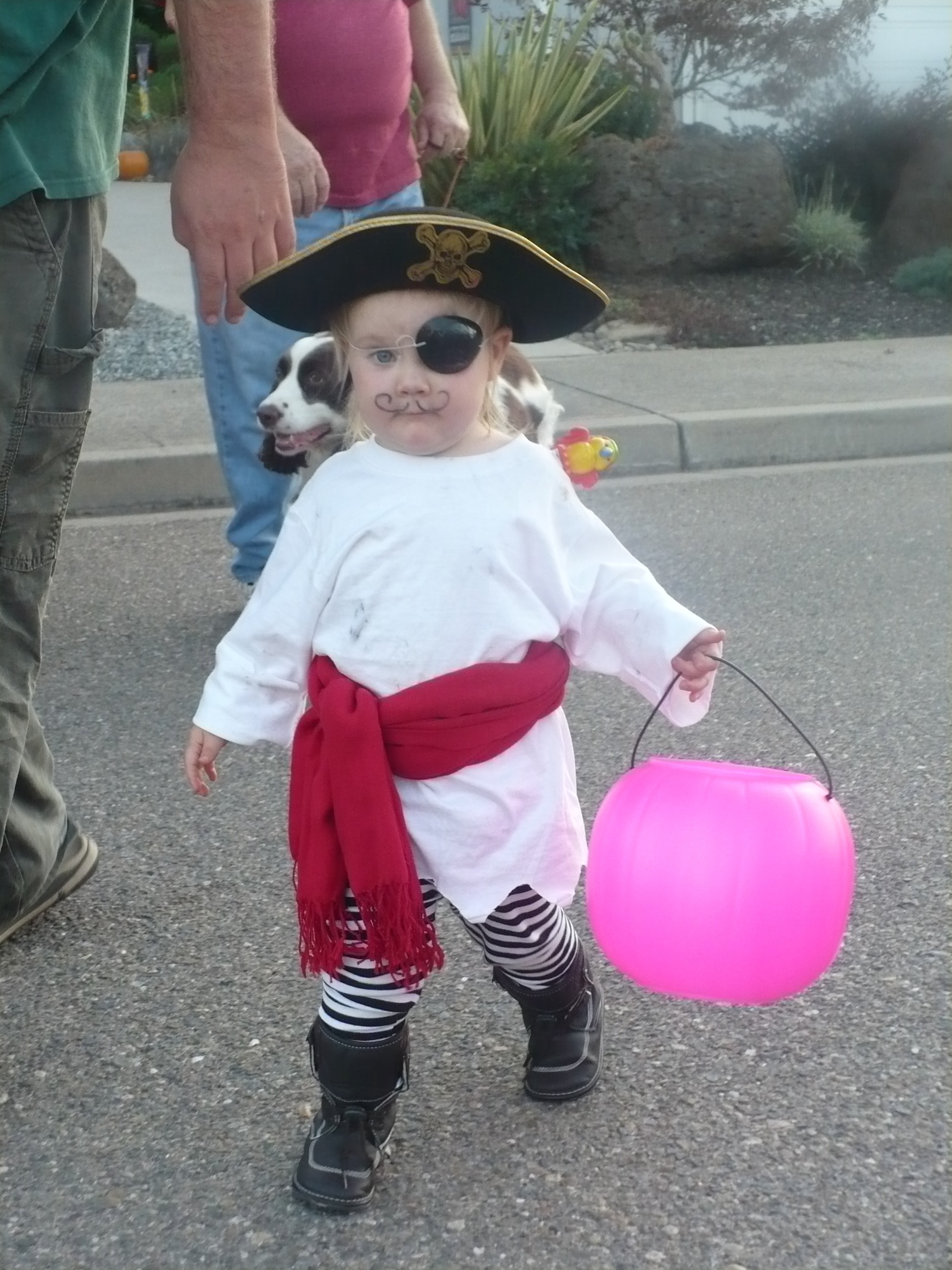 20111101-225733.jpg & pirate toddler | lazy to living